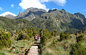 Rwenzori Mountain Expedition